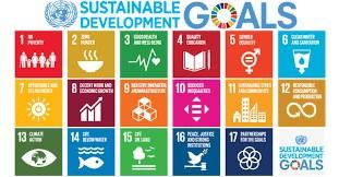 BioKube is totally committed to fulfilling United Nations SDG's to help secure clean water for all